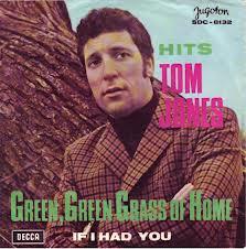 green-green-grass-of-home